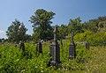 71-220-0010 Sushky Cemetery DSC 7175.jpg
