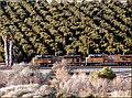 8-30 Freight Train in San Timoteo Canyon 1-20-13e (8510140463).jpg