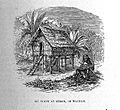 "A. R. Wallace, ""The Malay archipelago"" Wellcome L0028206.jpg"