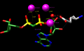 ADP Ribose Diphosphatase Mechanism (Glutamate 162 as catalyst).png