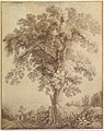 A Large Tree at Albano MET DP819690.jpg