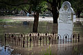 A cemetery in the Brisbane suburb of Fairfield flooded.jpg