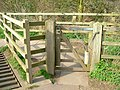 A gate by a cattle grid - geograph.org.uk - 1320752.jpg