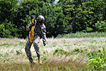 A pilot of a UH-60 Black Hawk helicopter lowers U.S. Army Sgt. Kevin Imhof to the ground during jungle penetrator hoist training near the Chesapeake and Delaware Canal in New Castle County, Del., Aug. 4, 2013 130804-Z-DL064-357.jpg