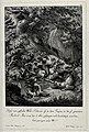 A wild boar is attacked by seven dogs during a hunt. Etching Wellcome V0021023.jpg
