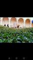 Abbazia San Michele Arcangelo Montescaglioso.png