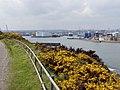 Aberdeen Harbour - geograph.org.uk - 1272837.jpg