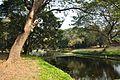 Acharya Jagadish Chandra Bose Indian Botanic Garden - Howrah 2011-01-08 9770.JPG