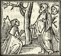 Agricola New Testament illustration p66.png
