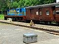 Aishbagh Sitapur Fast Passenger on Sunday - Flickr - Dr. Santulan Mahanta.jpg