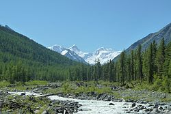 Akkem Valley 2011.jpg