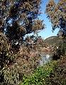 Alcoutim (Portugal) (32402215984).jpg