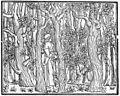 Aldus Manutius - Poliphilus in a Wood - WGA14035.jpg