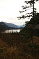 Altausseer See nordost 78970 2014-11-15.JPG