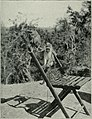Am Tendaguru - Leben und Wirken einer deutschen Forschungsexpedition zur Ausgrabung vorweltlicher Riesensaurier in Deutsch-Ostafrika (1912) (17977382208).jpg