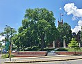 American Elm Tree at Smith College in Northampton, MA - June 2020.jpg