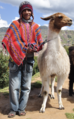 Amerindian with a llama.png