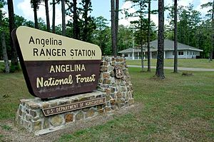 Texas Recreational Road 255 - The entrance to Angelina National Forest. RE 255 passes through the southern portion of the forest