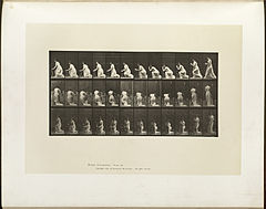 Animal locomotion. Plate 253 (Boston Public Library).jpg
