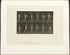 Animal locomotion. Plate 469 (Boston Public Library).jpg