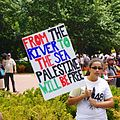 Anti-Israel Protest 45758 (14807769181).jpg
