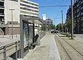 Antwerpen - Antwerpse tram, 23 juli 2019 (097, Bataviastraat, station MAS).JPG
