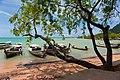 Ao Nang, Mueang Krabi District, Krabi, Thailand - panoramio (16).jpg