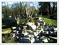 April Parc Natural Mundenhof Freiburg - Master Botany Photography 2013 - panoramio (6).jpg
