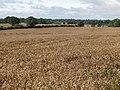 Arable land near Coldside Farm - geograph.org.uk - 617313.jpg