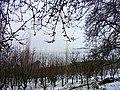 Araound Binalood 2 - panoramio.jpg