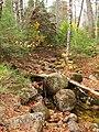 Arethusa Falls Trail, Hart's Location - panoramio (5).jpg