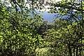 Arzakan-Meghradzor Sanctuary 026.jpg