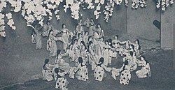 松竹 歌 劇団
