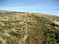 Ascending Tor Mere Top - geograph.org.uk - 1211669.jpg