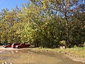 Asheville - panoramio (3).jpg