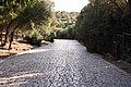 Athens 09 2013 - panoramio (90).jpg