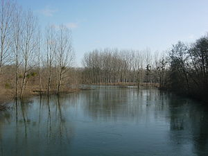 Avant-lès-Ramerupt - Aube River