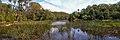 Audley Weir - panoramio (6).jpg