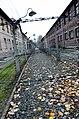 Auschwitz (10900603125).jpg