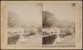 Austin's Glen, Catskills, N.Y. Hudson River, by Webster & Albee.png