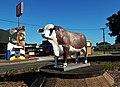 Australian Braford Statue Rockhampton.jpg