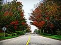 Autumn is Near (5020857307).jpg