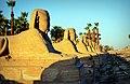 Avenue of Sphinxes.jpg