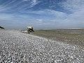 Baie Somme Hourdel - Cayeux-sur-Mer (FR80) - 2021-05-29 - 41.jpg