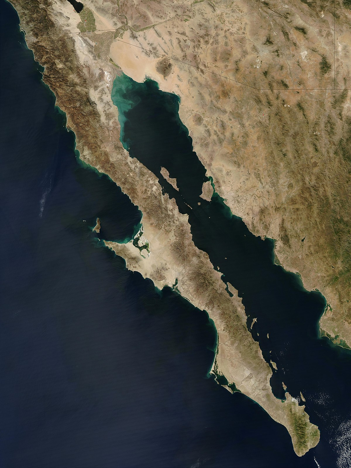 Baja California Peninsula - Wikipedia