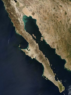 Island of California - A satellite view of Baja California Peninsula and the Gulf of California