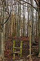 Baldwin's Wood - geograph.org.uk - 1150506.jpg