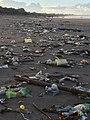 Bali beach pollution.jpg