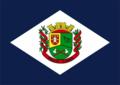 Bandeira-de-paulo-lopes.png