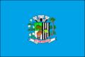 Bandeira Sales.png